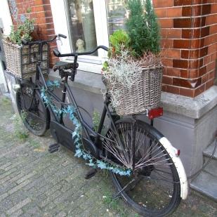 23 Amsterdam W1 A Flowery Bike