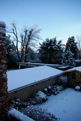 12. Winter 2015