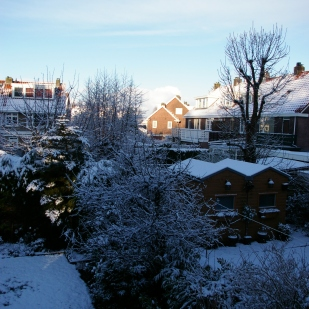 15. Winter 2015
